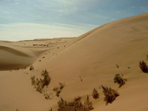 Map Of Asia Gobi Desert.Unique Facts About Asia Gobi Desert